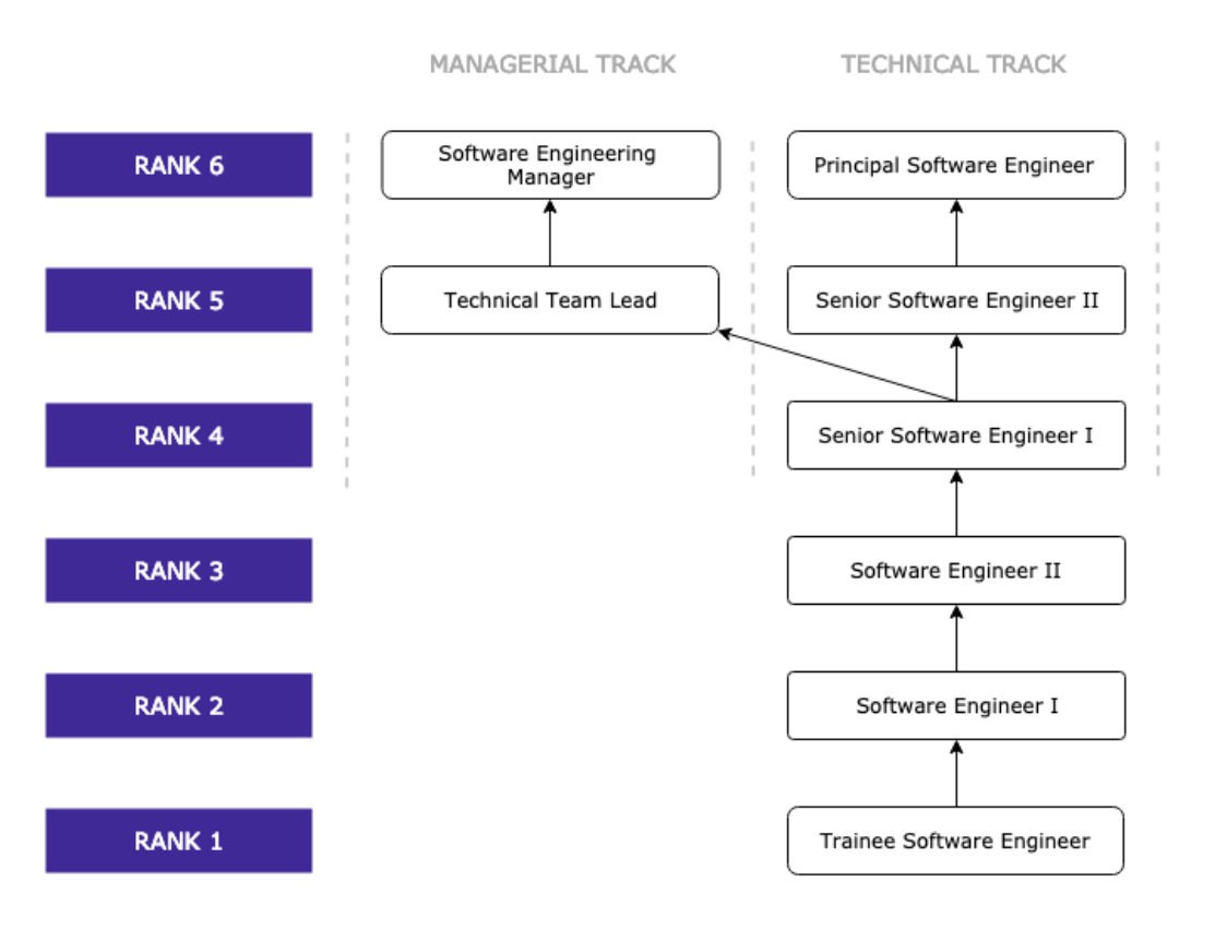 Managerial and technical track graph showing the ranks of team leads to software engineers