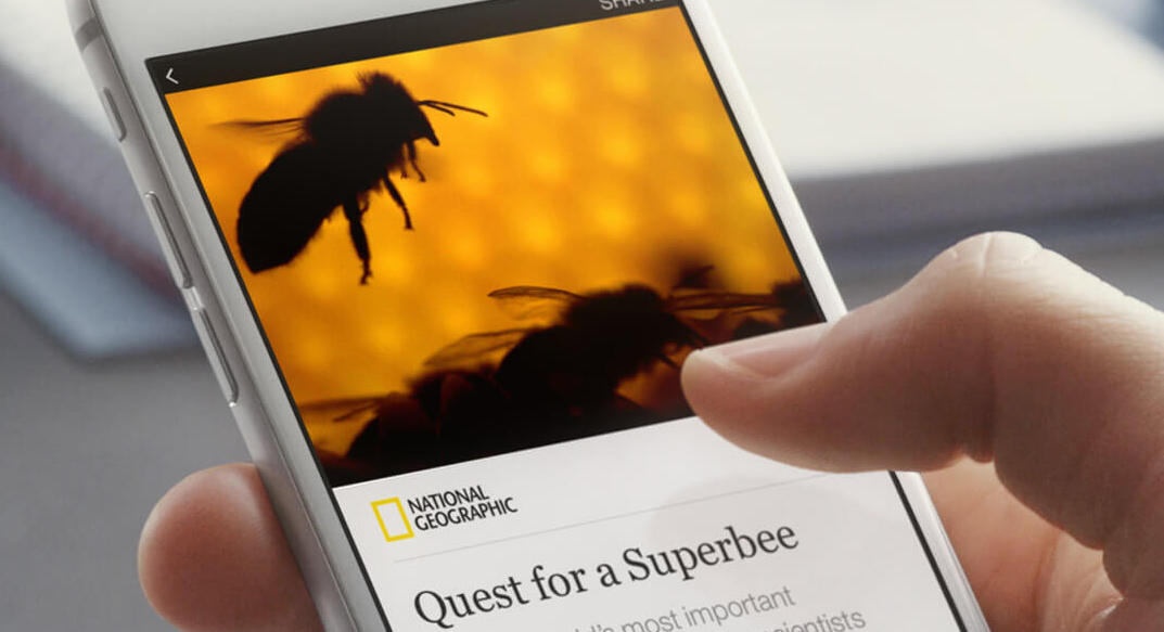 Mobile displaying an AMP article on the National Geographic site